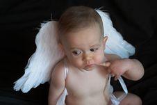 Free Angel Baby Royalty Free Stock Photo - 2037415
