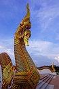 Free Naga Stock Images - 20304484
