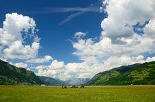 Free Austria Stock Image - 20301221