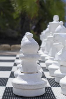 Free Chess Stock Photography - 20305062