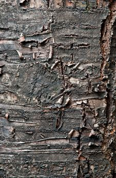 Free Old Wood Texture Stock Image - 20305111