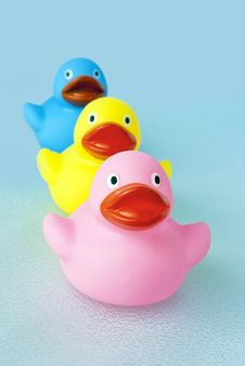 Free Bathtub Rubber Ducks Royalty Free Stock Photo - 20305485