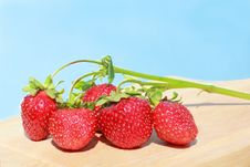 Free Sprig Of Strawberries On The Sky Background Royalty Free Stock Images - 20306309