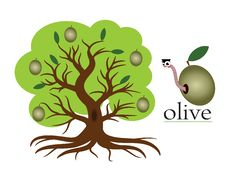 Free Olive Tree Royalty Free Stock Photography - 20306697