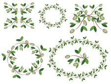 Free Decor With Olive Branches. Stock Photography - 20306822