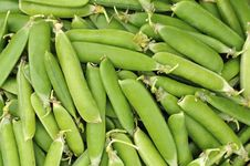 Free Pea Pods Royalty Free Stock Image - 20307276