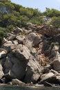 Free Dragonera Island Stock Photos - 20312583