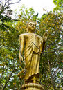 Free Image Buddha In The Forest Stock Image - 20314011