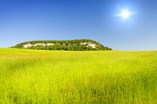 Free Green Meadow On The Sunset. Stock Photography - 20310022