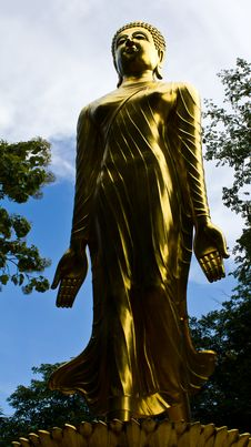Free Golden Buddha Statue Stands. Royalty Free Stock Photography - 20310667