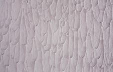 Free Colored Silicone Plaster On The Wall Royalty Free Stock Images - 20311839