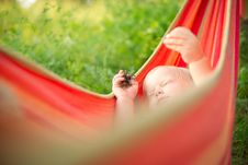 Free Adorable Baby Relaxing In Hammock Stock Images - 20312074