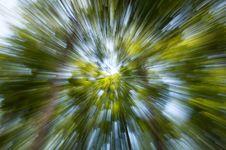 Free Green Esplosion Royalty Free Stock Photo - 20312425