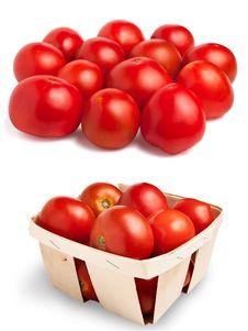Free Tomatoes Stock Photo - 20313120