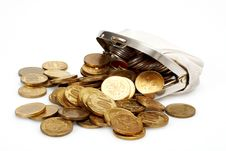 Free Open Purse With Gold Coins Royalty Free Stock Image - 20313596
