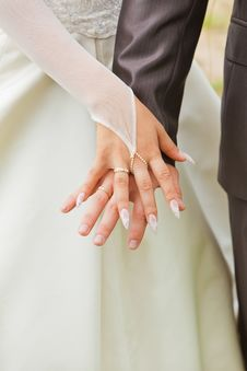 Free Hands Of Bride And Groom. Royalty Free Stock Images - 20315379