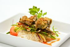 Free Roast Duck Salad Stock Images - 20315434