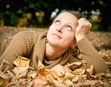 Free Young Autumn Beauty Stock Photos - 20316493