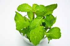 Free Fresh Mint In Glass Royalty Free Stock Photo - 20316755