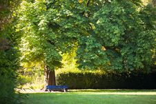 Free Morning In The Park Royalty Free Stock Image - 20317036