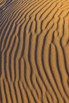 Free Ripples In The Sand Royalty Free Stock Image - 20318586