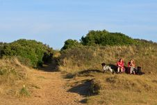 Free Women With Dogs Sitting In The Dunes Stock Photos - 20318773