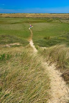 Free Sand Dunes With Helmet Grass Royalty Free Stock Photos - 20319148