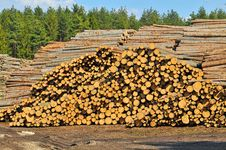 Free Heap Of Timber Stock Photography - 20319832