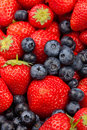 Free Strawberries And Blueberries Royalty Free Stock Photography - 20323987
