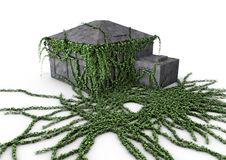 Free House Covered With Ivy Royalty Free Stock Image - 20320036