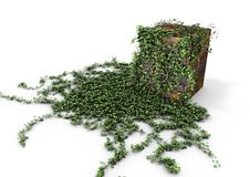 Free Safe Overgrown With Ivy Stock Photo - 20320060