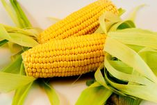 Free Corn Stock Images - 20321244