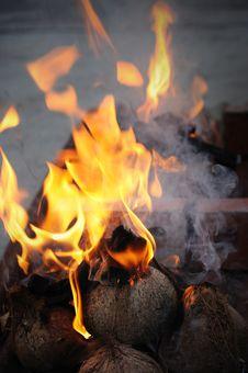 Free Traditional Campfire Stock Photos - 20321513