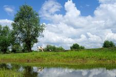 Free A Cow Under Blue Sky And White Clouds Stock Photos - 20322603