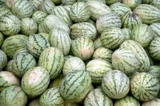 Free Watermelon Stock Photos - 20323073