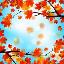 Free Red And Yellow Leaves Against Blue Sky. EPS 8 Stock Photos - 20323723