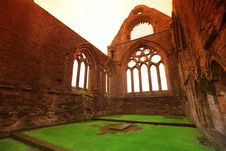 Free Sweetheart Abbey Royalty Free Stock Photos - 20325018
