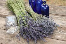 Free Lavender Stock Image - 20328271