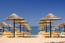 Free EDZR - Beach Umbrellas Royalty Free Stock Photo - 20328425
