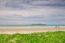 Free The Landscape Of Sunny Beach Stock Images - 20328784