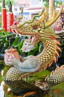Free Asian Temple Dragon Stock Images - 20329754