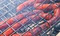 Free Grill Sausage Stock Photos - 20333923