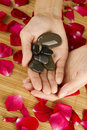 Free Hands On Rose Petals Stock Photography - 20335732
