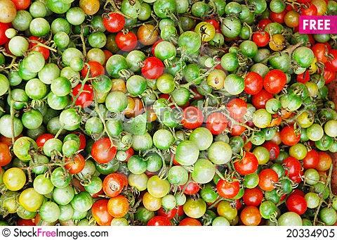 Free Green Tomato Royalty Free Stock Photo - 20334905