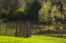 Free Garden In Spring Royalty Free Stock Photos - 20330138