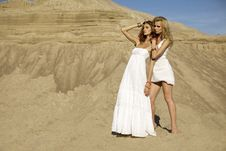 Free Two  Girl Friends - Blond And Brunette Royalty Free Stock Photos - 20330648