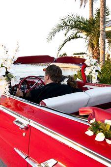 Free Tropical Destination Wedding Royalty Free Stock Photos - 20331118