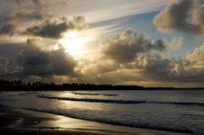 Free Paradaise Beach Royalty Free Stock Photography - 20332377