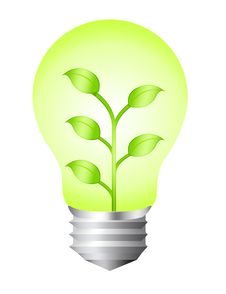 Free Electric Bulb Nature Royalty Free Stock Images - 20333099