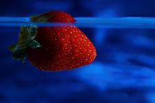 Free Strawberry In Blue Stock Images - 20334864